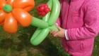 WGH-Ballon